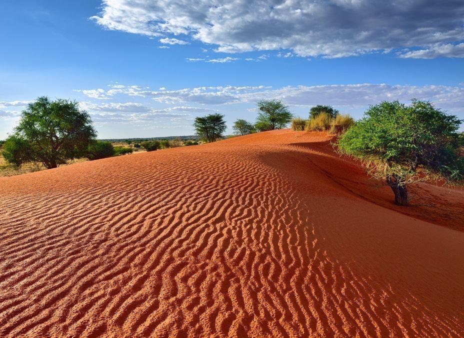 Dunas y Desiertos