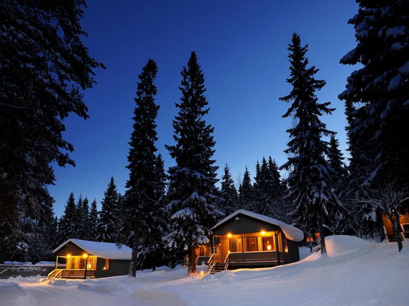 Laponia sueca: Brändön Lodge - Pine Bay Lodge