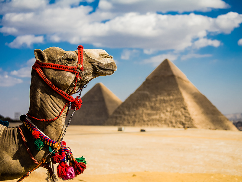 Abu Simbel, Cairo y Nilo