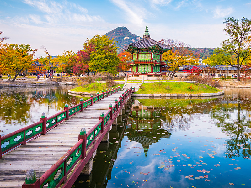 Corea del Sur al completo