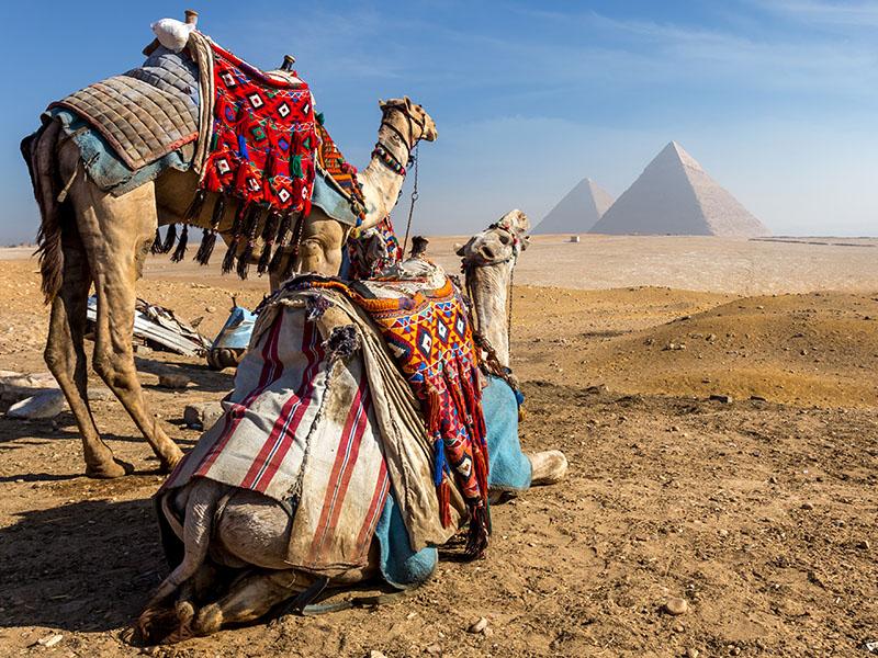 Egipto Fascinante - Salida miércoles, viernes y domingo