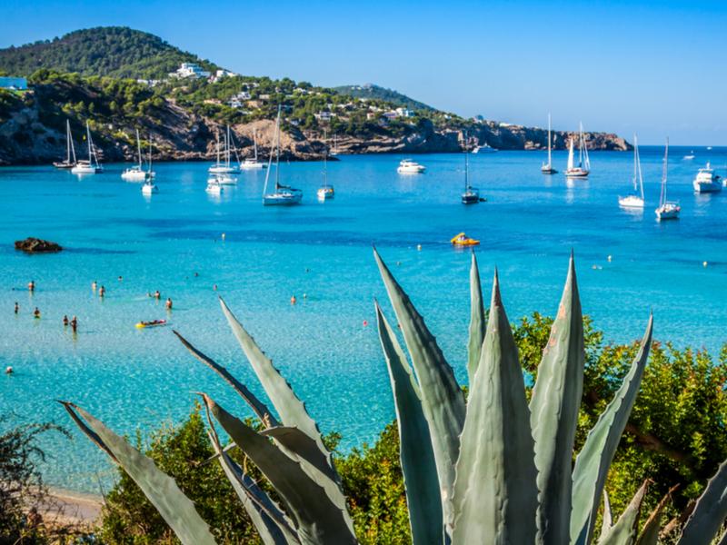 Ibiza - Salidas Diarias