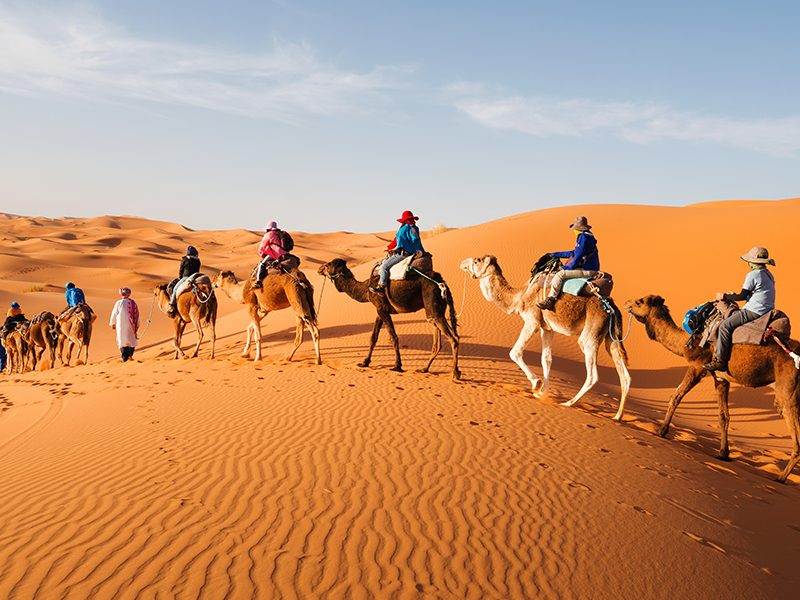 Marrakech y Sahara