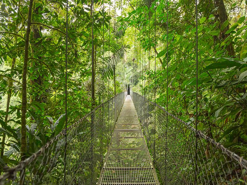 Parques Nacionales de Costa Rica con Manuel Antonio