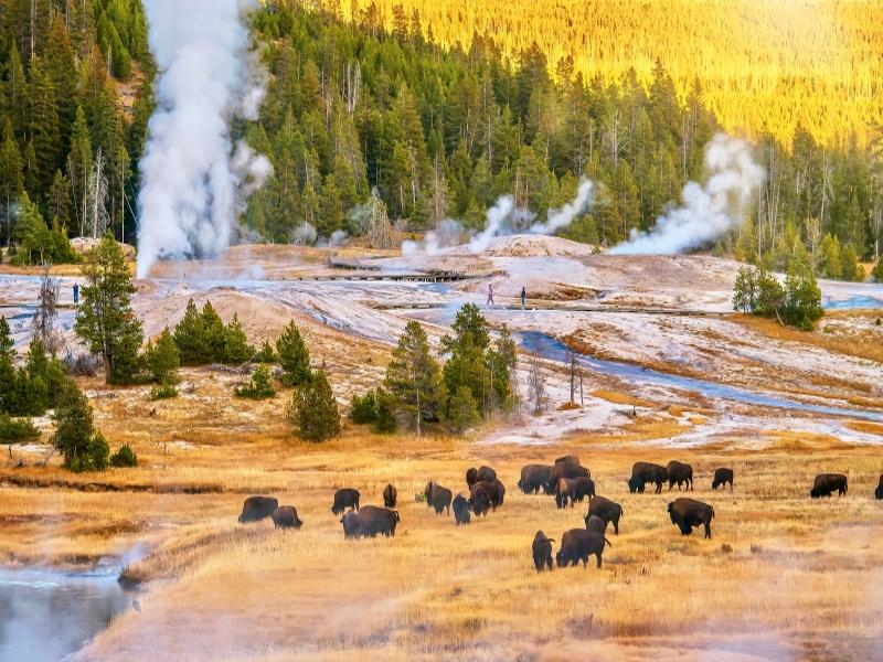 Parques Nacionales del Oeste