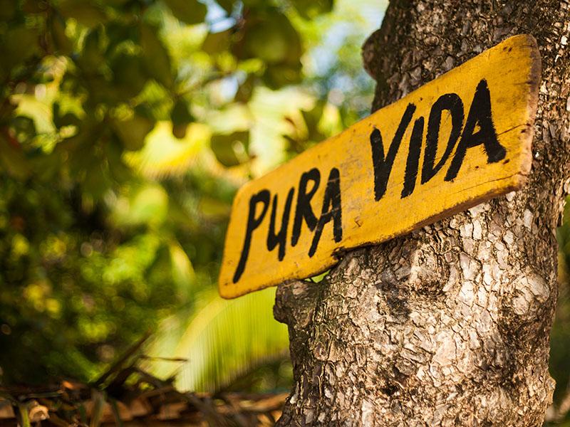 Pura Vida con Guanacaste