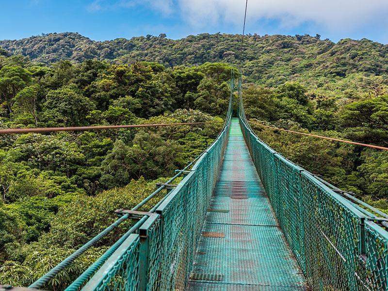 Pura Vida - Opción Guanacaste