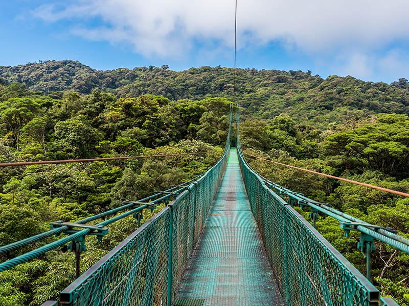 Rumbo al Caribe - Extensión Monteverde