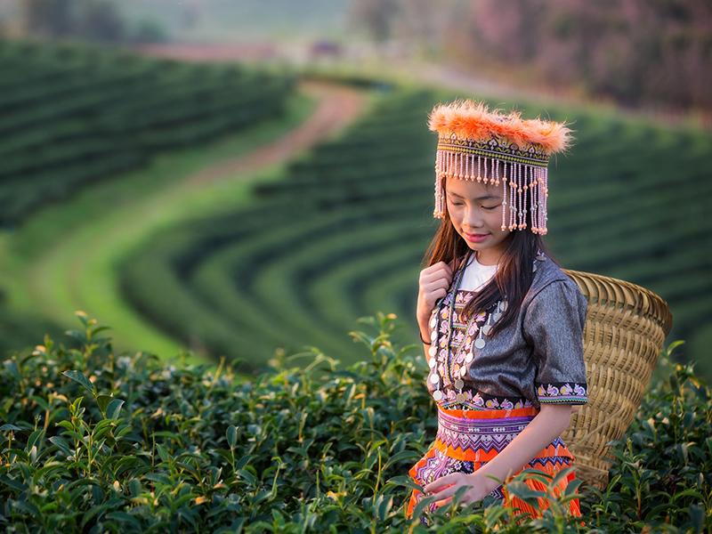 Súper Thai