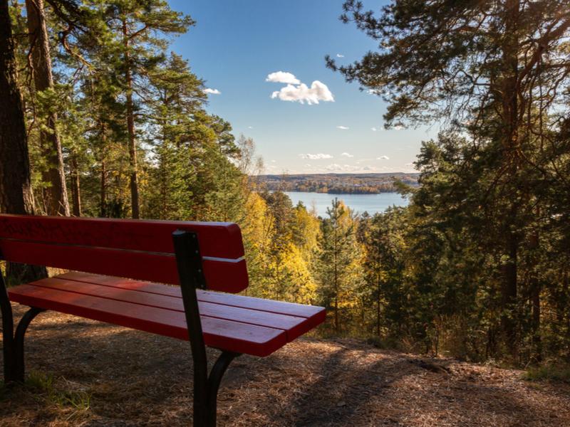 Sur de Finlandia y sus lagos