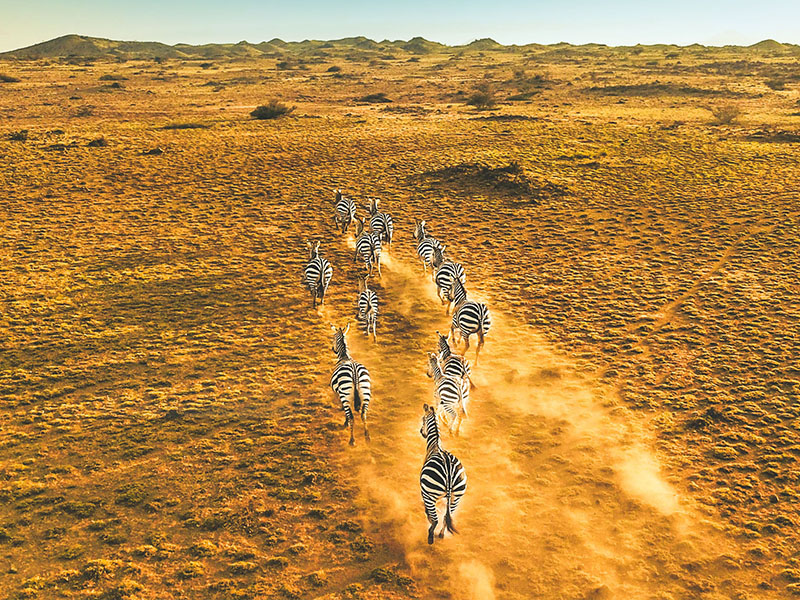 Tanzania al Completo - Privado
