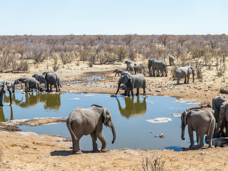 Tesoros de Namibia