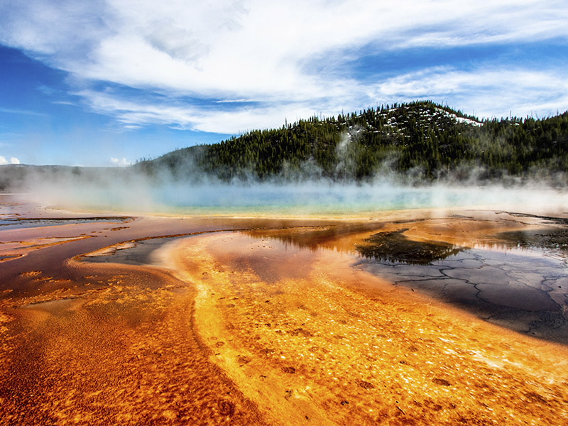 Yellowstone y Los Grandes Parques - Extensión Costa de California